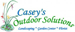 Casey's Outdoor Solutions